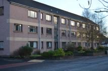 Flat to rent in Flat 6 72 Strathblane...