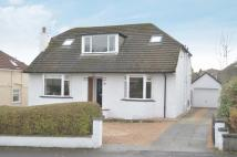 17 Kelvin Crescent Detached Bungalow for sale