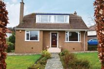 Detached Bungalow for sale in Cairnhill Road, Bearsden...