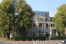 Apartment in Hughenden Road, 3-2...