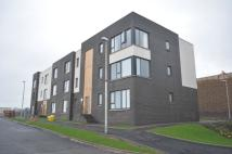 Flat to rent in Peters Gate, 2/1...