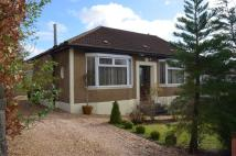 Semi-Detached Bungalow in Hillfoot Avenue...