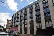 Montague Street Flat to rent