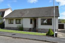 Detached Bungalow in 13 Greenhaugh Way, Braco...