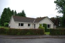 3 bed Detached Bungalow in 1a  Murdiston Avenue ...