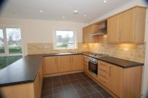 Detached Bungalow to rent in 24 Livingston Avenue...