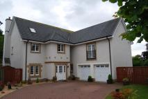 Detached property to rent in Marsden Court, Stirling...