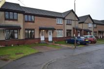 Milton Terraced house to rent
