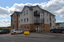 Apartment to rent in Rollock Street, Stirling...