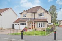4 bed Detached house in Benview, Bannockburn...