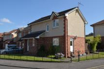 3 bed Detached home in Dr Campbell Avenue...