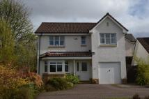Detached home for sale in Delph Wynd, Tullibody...