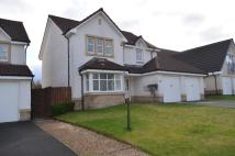 Detached house in Delph Wynd, Tullibody...