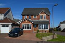 4 bedroom Detached house for sale in Blackthorn Grove...