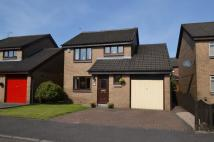 Detached house in Wood Avens, Tullibody...