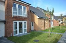 2 bedroom Terraced home in Erskine Street, Stirling