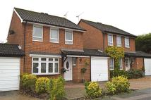 3 bedroom Link Detached House for sale in Shetland Close...