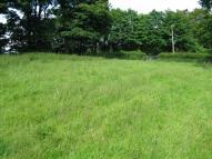 Land in Circa 1.53 Acres Pony...