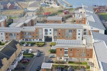 Apartment to rent in Felixstowe Court...