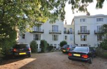 Flat to rent in Grove Hill Gardens...
