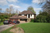 Detached home to rent in Highgrove Tunbridge Wells