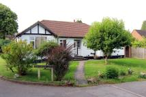 Detached Bungalow for sale in Upper Ashlyns Road...