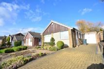 Detached Bungalow to rent in Mapperley Orchard...