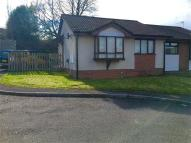 2 bed Semi-Detached Bungalow to rent in Llwyn Brwydrau...