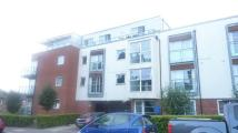 1 bed Flat in Honiton Road...