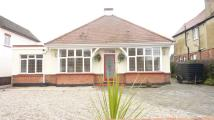 Detached Bungalow for sale in Cardigan Avenue...