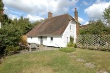 Cottage in Flackley Ash, Peasmarsh