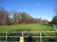 Equestrian Facility home to rent in Main Street, Peasmarsh