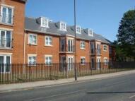 Flat to rent in Spring Court, Ipswich