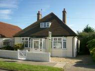 3 bedroom Detached Bungalow for sale in Madeira Road...