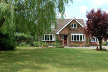4 bedroom Equestrian Facility home in Blackwoods, Easingwold