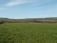 Farm Land for sale in 14.83 Acres,  Hinderwell...