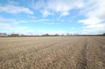 8.40 Acres Farm Land for sale