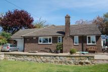 4 bedroom Detached Bungalow in South Street, Scalby...