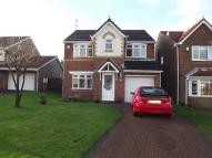 4 bed Detached house for sale in South Shields