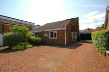 Bungalow for sale in Mitford Road...