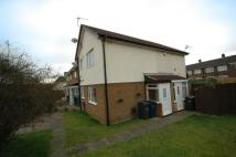 Westcliffe Way semi detached house to rent