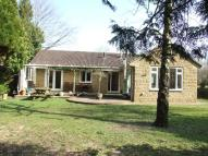 Detached Bungalow for sale in Mill Lane, Castle Cary...