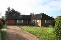 3 bed Detached Bungalow in Swanmore. Development...