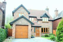 Detached house in Bishops Waltham