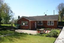 Detached Bungalow in Upham Street, Upham,