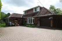 4 bedroom Bungalow for sale in Durley