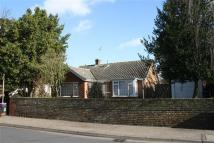 Bungalow for sale in The Retreat, Witham
