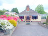 Red Bank Detached Bungalow for sale