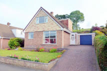 Detached Bungalow in Dolforgan View, SY16