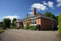 Detached Bungalow for sale in St Thomas, Exeter
